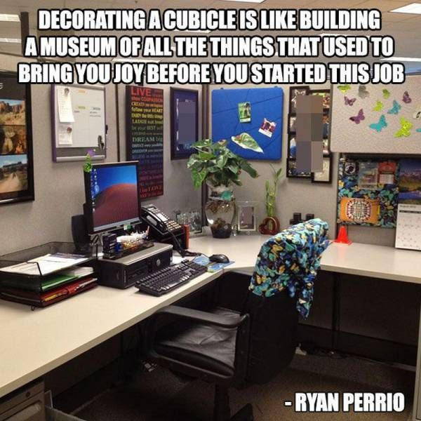 decorating a cubicle is like building a museum of all the things that used to bring you joy before you started this job, meme