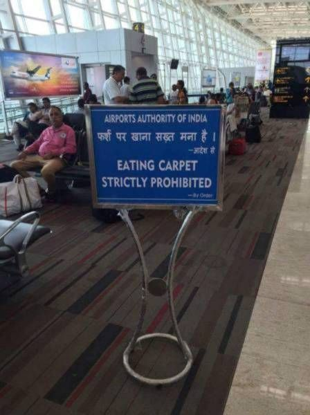eating carpet strictly prohibited, but prohibition never works, wtf, engrish