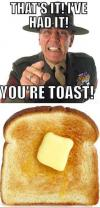 that's it i've had it, you're toast!, literal, meme