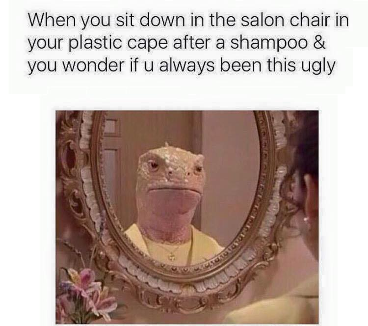 when you sit down in the salon chair in your plastic cape after a shampoo & you wonder if u always been this ugly