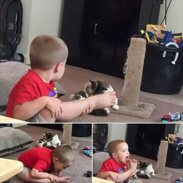kid sees cat cleaning self and tries to do the same