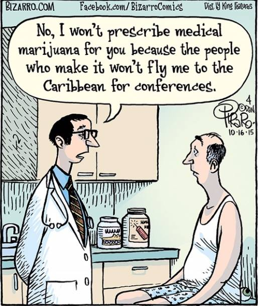 no i won't prescribe medical marijuana for you because the people who make it won't fly me to the carribean for conferences