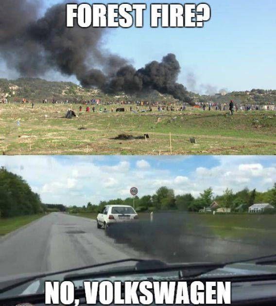 forest fire?, no, volkswagen, meme