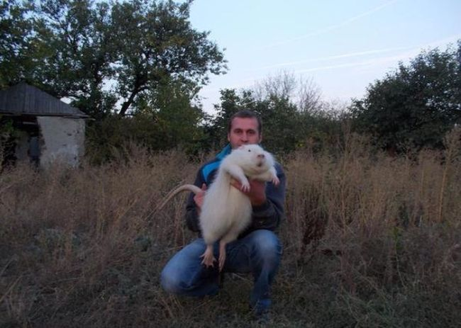 just a giant rodent in ukraine