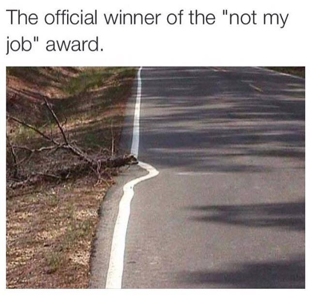 the official winner of the not my job award, street line painted around dead tree