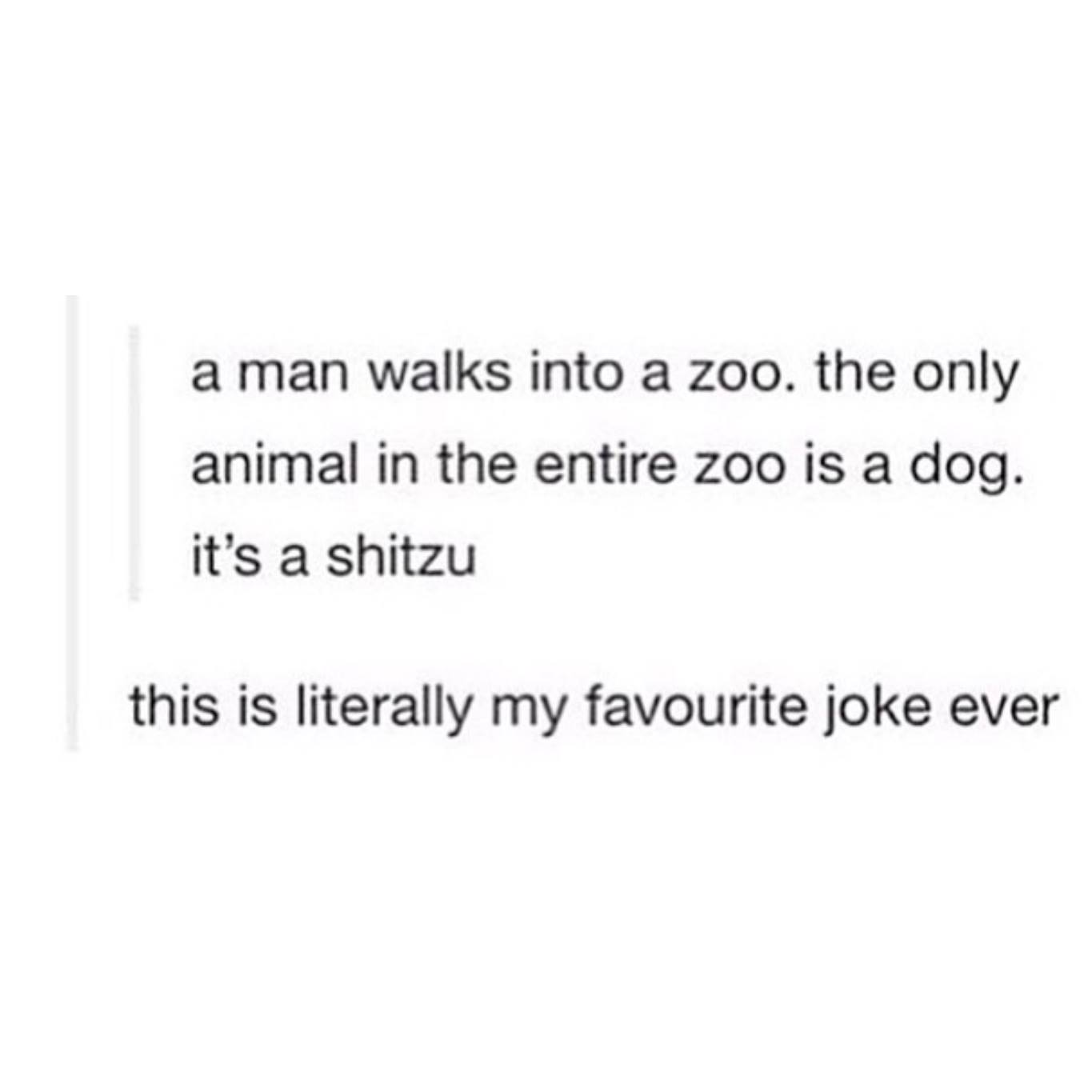 a man walks into a zoo, the only animal in the entire zoo is a dog, it's a shitzu, this is literally my favourite joke ever