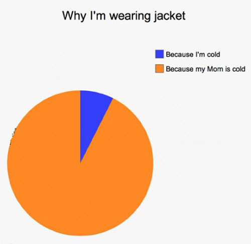 why i'm wearing a jacket, because i'm cold, because my mom is cold, pie chart