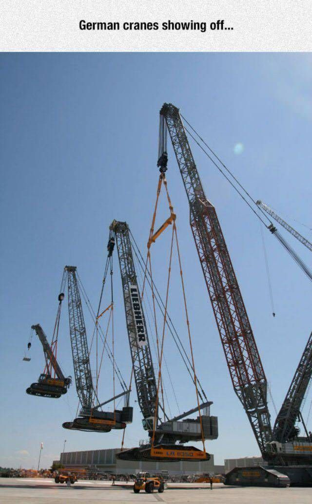 german cranes showing off