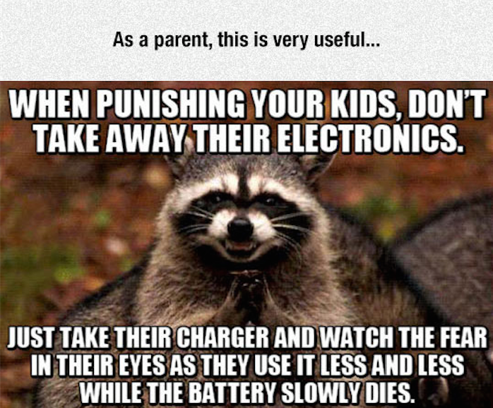 as a parent this is very useful, when punishing your kids, don't take away their electronics, just take away their chargers, evil plotting racoon, meme