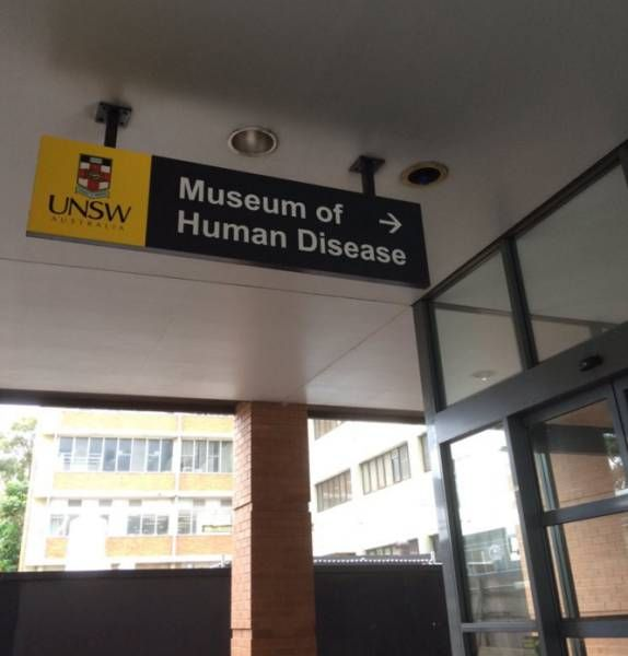 museum of human disease, worst museum ever
