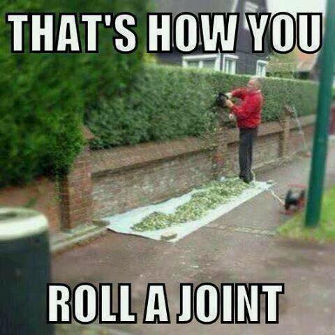 that's how you roll a joint, meme, man cutting hedges into giant paper