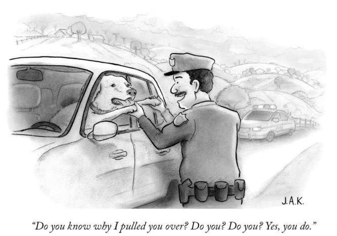 do you know why i pulled you over, do you?, do you?, yes you do!, cop pulling over dog