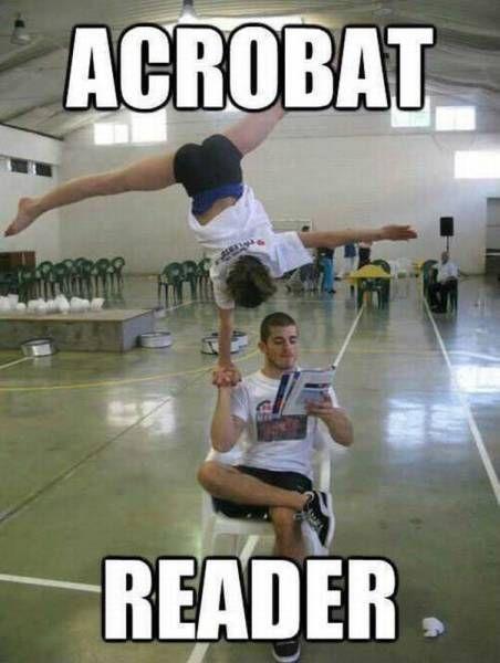 acrobat reader, meme