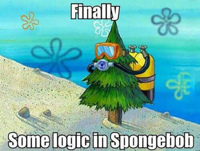 finally some logic in spongebob, meme