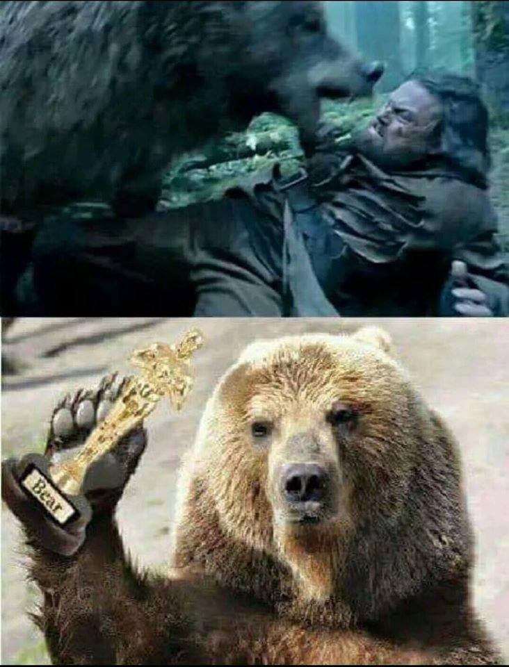 bear attacks leonardo dicaprio and wins oscar
