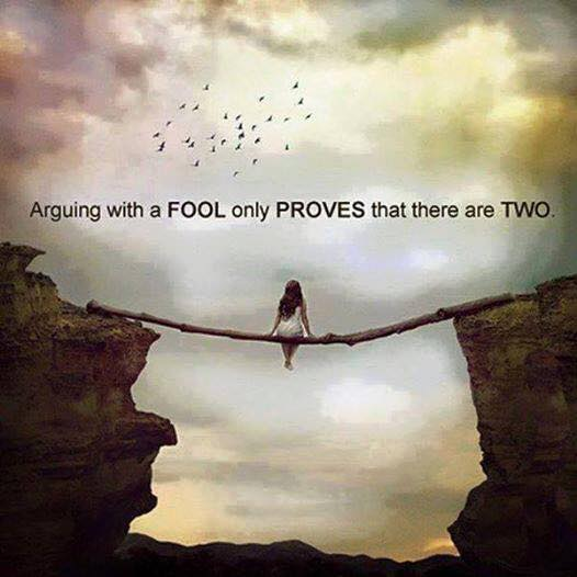 arguing with fools only proves that there are two