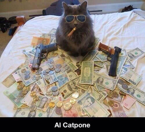 al catpone, cat wing a cigar, guns and money
