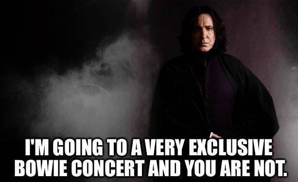 i'm going to a very exclusive bowie concert and you are not, alan rickman, rip