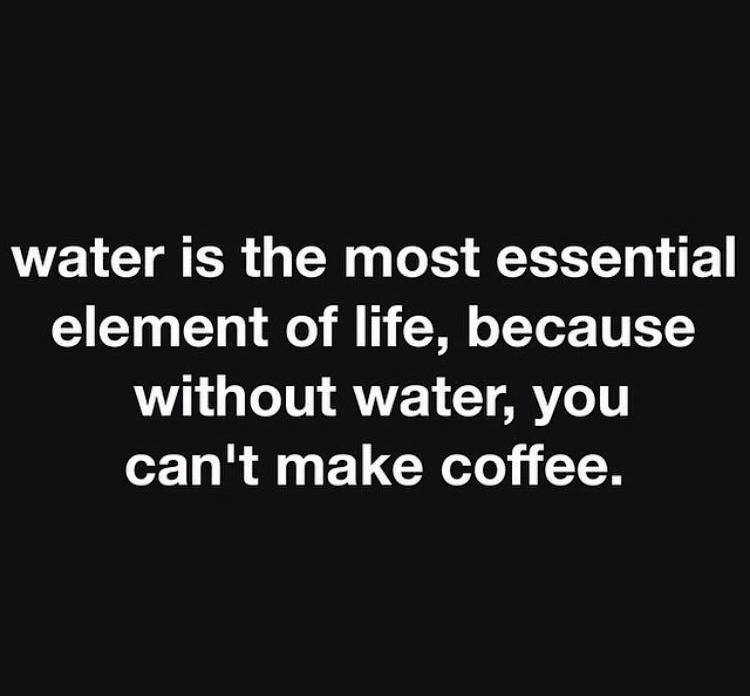 water is the most essential element of life, because without water you can't make coffee