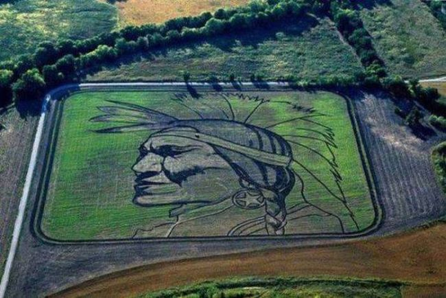aerial view of crop art depicting head of native american