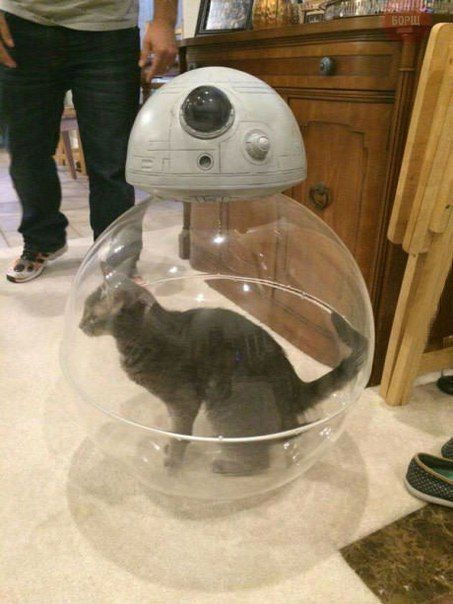 how the robot in star wars the force awakens really works, cat in ball