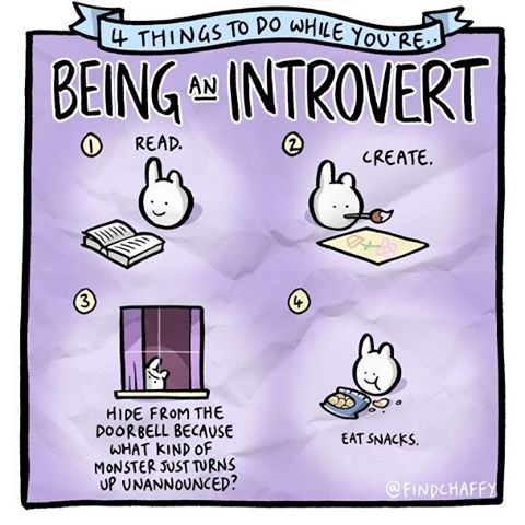 4 things to do while you're being an introvert, read, create, hide from the doorbell because what kind of monster just turns up unannounced, eat snacks