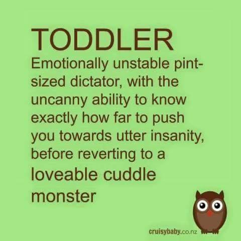 Image result for definition of toddler pint sized dictator