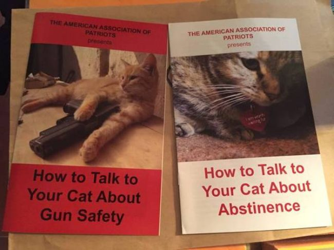 how to talk to your cat about gun safety, how to talk to your cat about abstinence, cat books