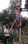 helping your friend fix the power line with a wooden ass support