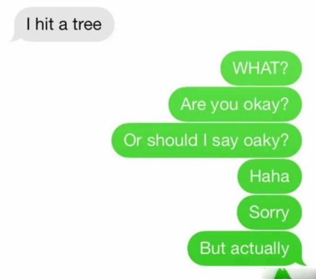 i hit a tree, what are you okay?, or should i say oaky?