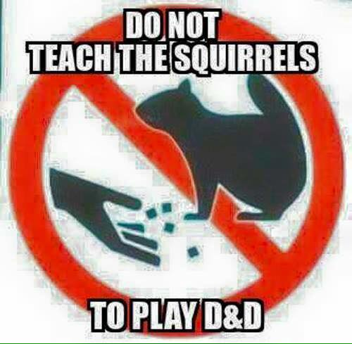 do not teach the squirrels to play d&d