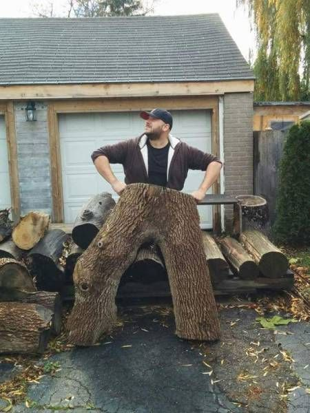 this tree trunk totally looks like pants