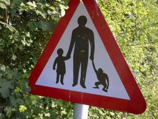 please yield holding hands with children and primates