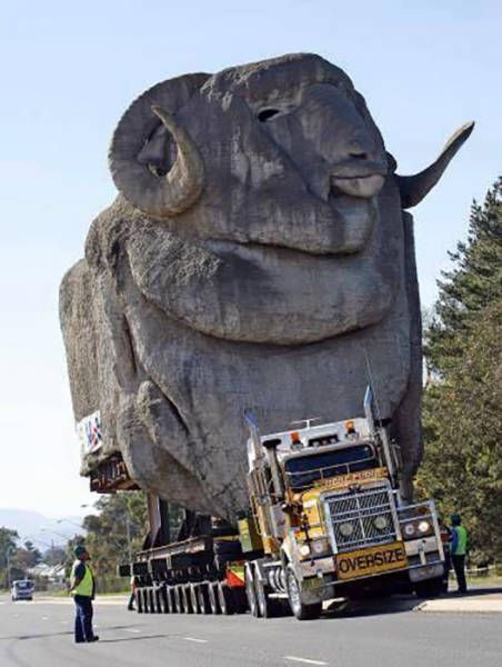 transporting a giant mountain goat rock face