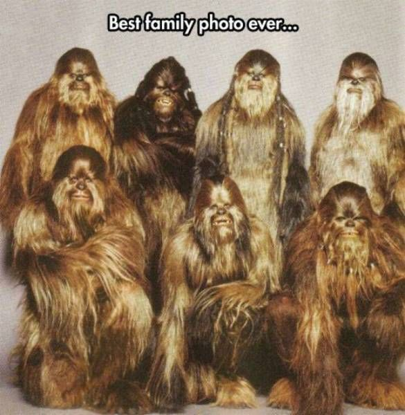 best family photo ever, wookiee costumes for all