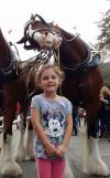 horse photobombing a little girl