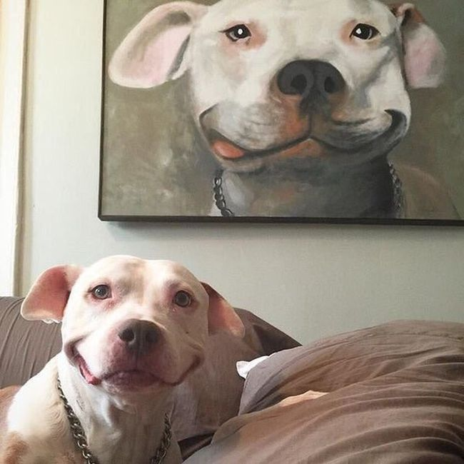 painting of happy dog looks exactly like happy dog