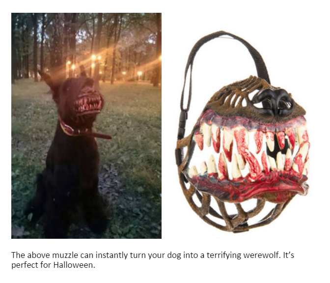 the above muzzle can instantly turn your dog into a terrifying werewolf, it's perfect for halloween, creepy bloody dog teeth muzzle