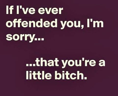 if i've ever offended you i'm sorry, that you're a little bitch