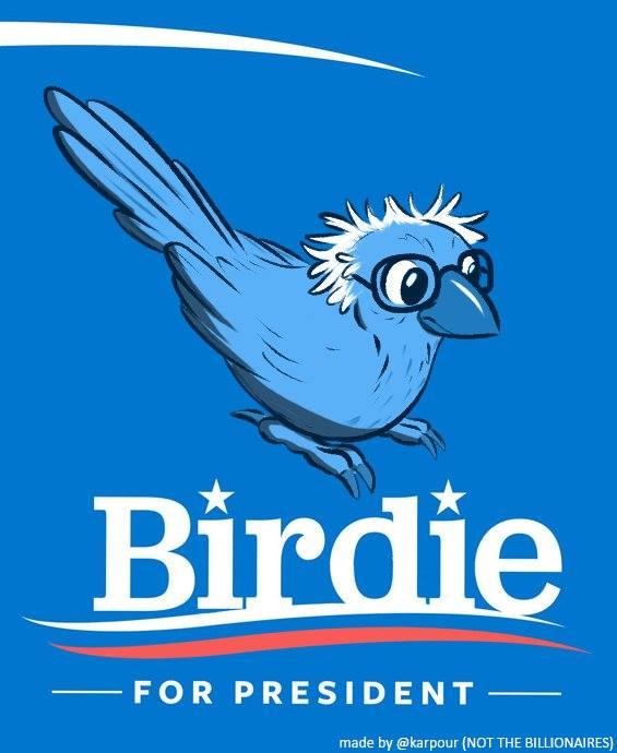 birdie for president 2016, bernie sanders