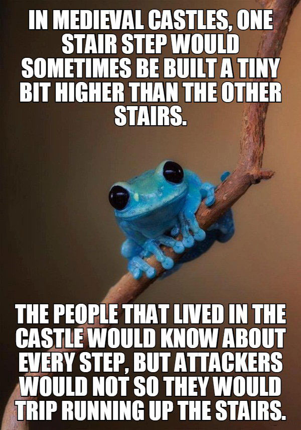 in medieval castles one stair step would be built a tiny bit higher than the other stairs, the people that lived in the castle would know about every step, attackers would not so they would trip running up the stairs, meme