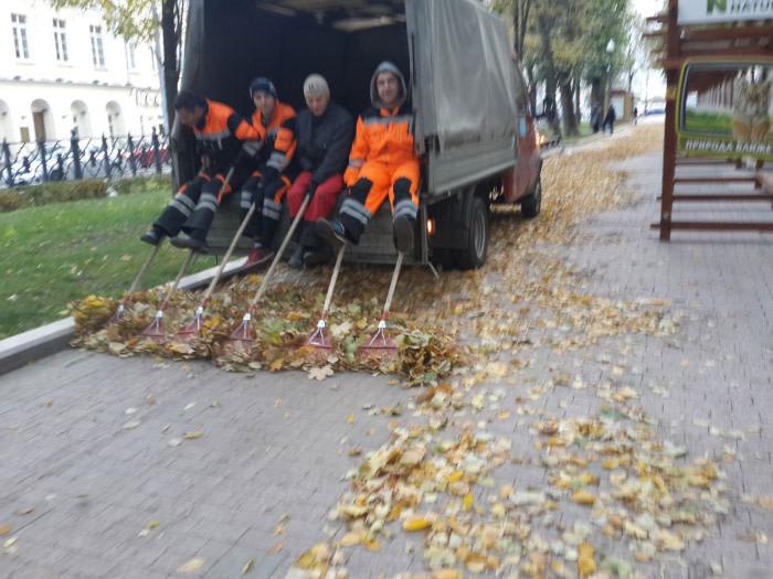 working hard or working smart, men raking leaves from back of truck