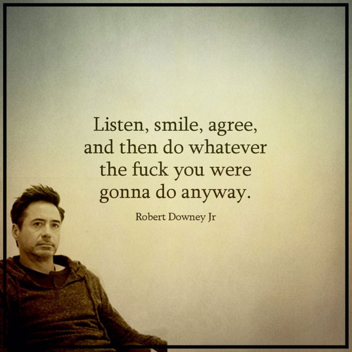 listen smile agree and then do whatever the fuck you were gonna do anyway, robert downey jr