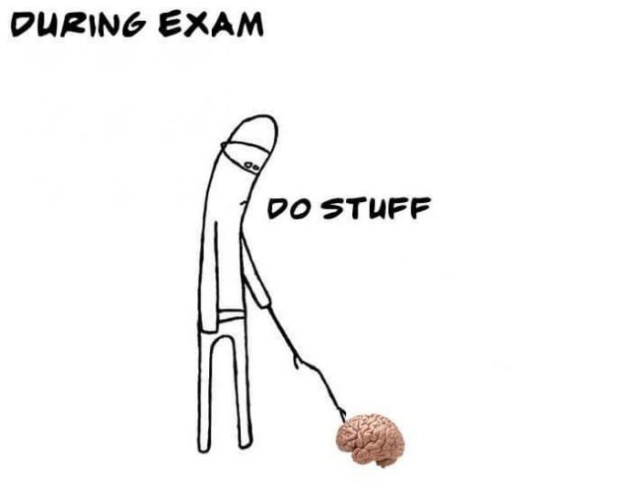 during exam, common brain do stuff