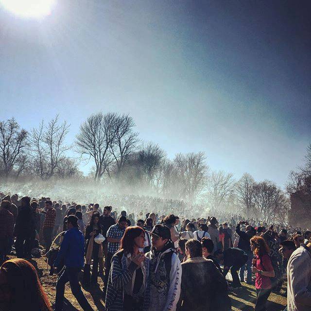a massive cloud of weed smoke errupted over mount royal park as the clock hit 420pm today