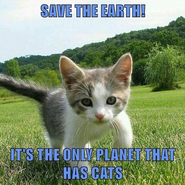 save the earth, it's the only planet that has cats