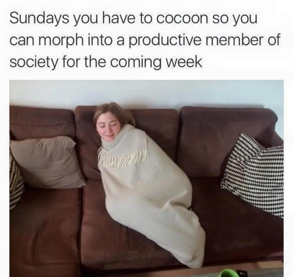 sundays you have to cocoon so you can morph into a productive member of society for the coming week