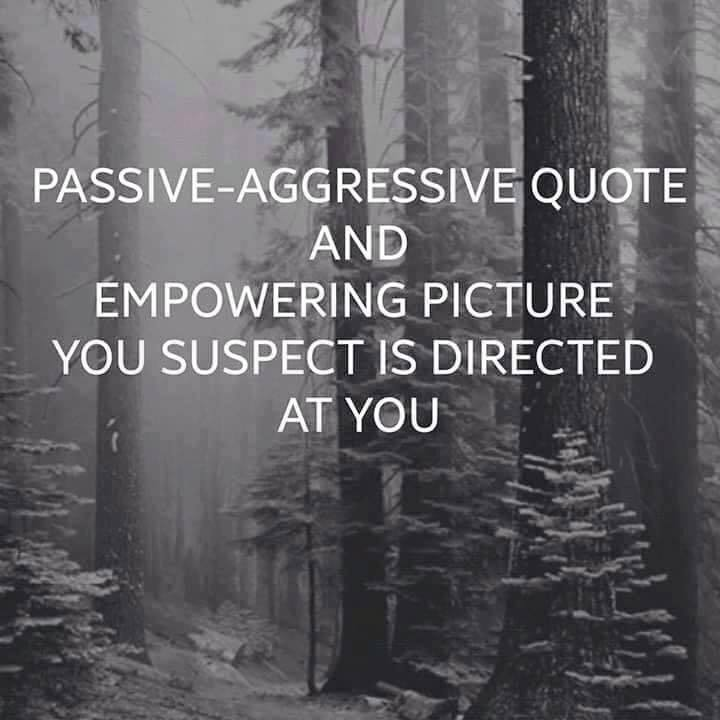 passive aggressive quote and empowering picture you suspect is directed at you