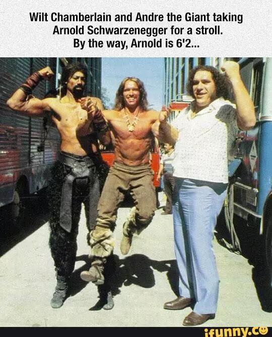 wilt chamberlain and andre the giant taking arnold schwarzenegger for a stroll, by the way, arnold is 6'2