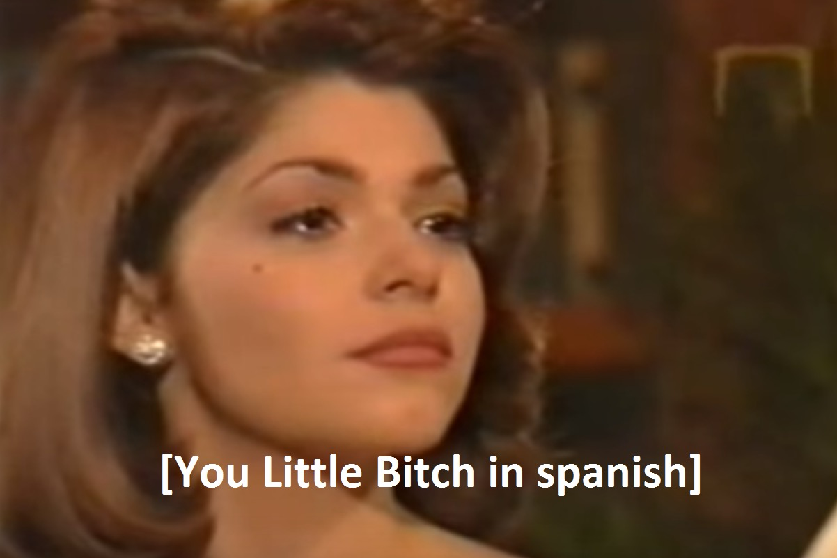 you little bitch in spanish